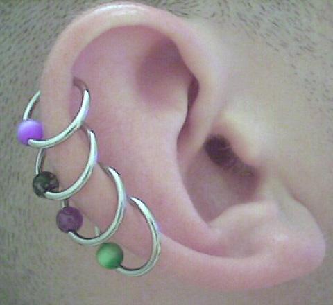inner labia piercing pictures. Helix Piercings - 16 ga.